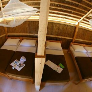 Bungalow BGW 5 Standard Park wood view 4 9868591