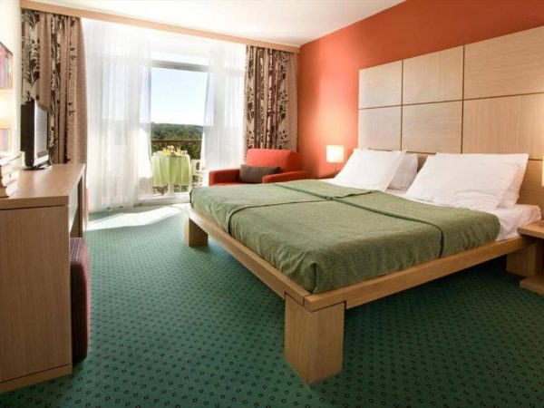 Room 1 1 Superior Park wood view Balcony 9356922 356924 1